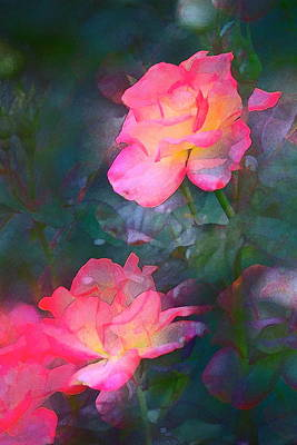 Rose 194 Art Print by Pamela Cooper