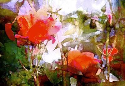 Rose 204 Art Print by Pamela Cooper