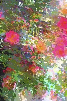 Rose 207 Art Print by Pamela Cooper