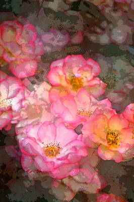 Rose 210 Art Print by Pamela Cooper