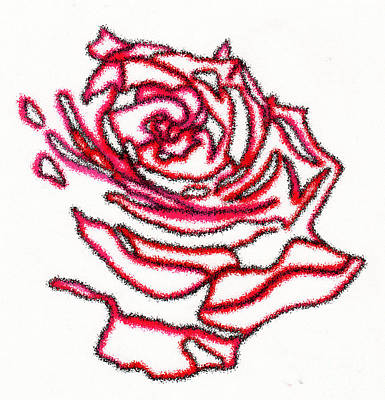 Rose 3 Art Print by Christine Perry