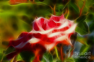 Rose 6168-fractal Art Print by Gary Gingrich Galleries