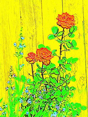 Rose 9 Art Print by Pamela Cooper