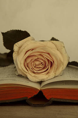 Photograph - Rose And Book by Ethiriel  Photography
