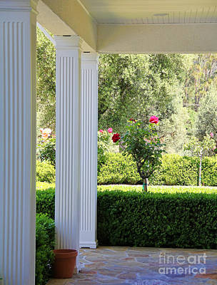 Rose And Front Porch Art Print by Jack Schultz