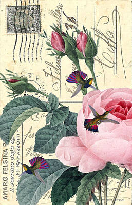Redoute Digital Art - Rose And Hummingbirds by Evey Studios