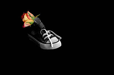 Rose And Shoe Art Print