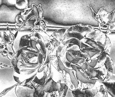 Photograph - Rose Bouquet In Chrome by Belinda Lee