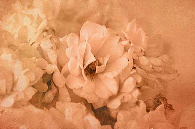 Photograph - Rose Bouquet In Sepia by Kathleen Stephens