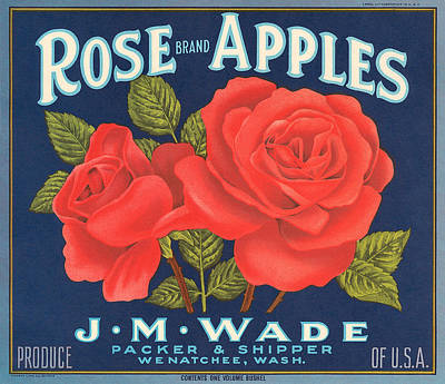 Rose Brad Apples Crate Label Art Print by Label Art
