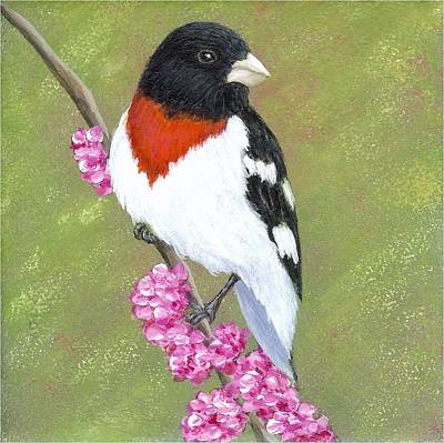 Painting - Rose-breasted Grosbeak by Fran Brooks