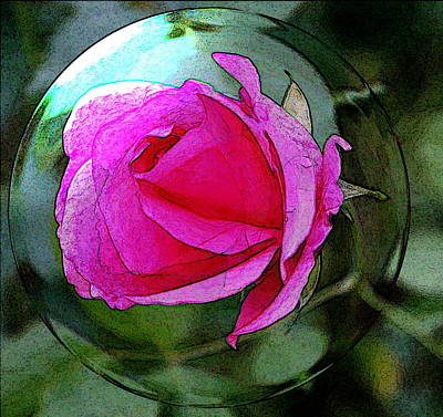 Digital Art - Rose Bubble by Carrie OBrien Sibley