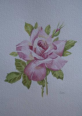 Painting - Rose by Carol De Bruyn