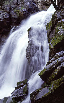 Photograph - Rose Creek Falls by Ginny Barklow