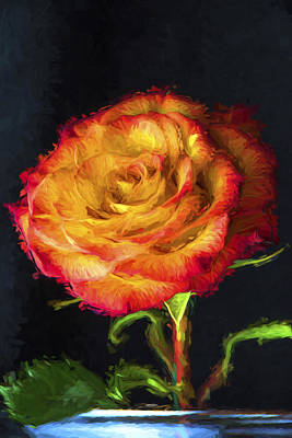 Photograph - Rose Digitally Dipped In Wet Paint by David Haskett
