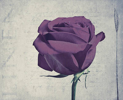 Rose En Variation -s09t09 Art Print