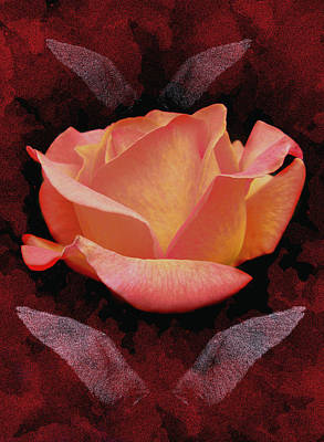 Rose From Angels Digital Art Art Print by Costinel Floricel