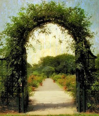 Vines Photograph - Rose Garden Corridor by Jessica Jenney
