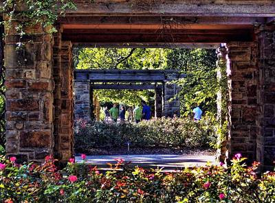 Photograph - Rose Garden In Fort Worth by Janet Maloy