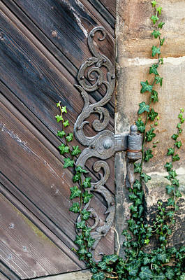 Bamberg Photograph - Rose Garden In The Neue Residenz (new by Michael Defreitas