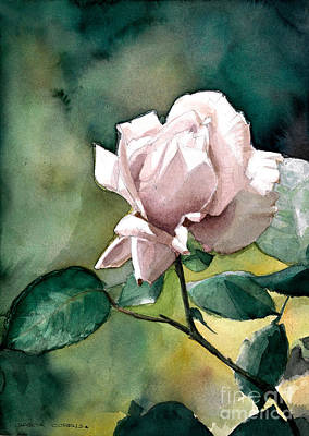 Watercolor Of A Lilac Rose  Art Print