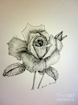 Rose In Monotone Art Print