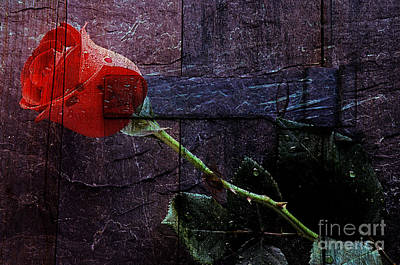 Mixed Media - Rose by Marvin Blaine