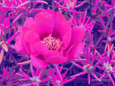 Rose Moss Single Art Print by Margaret Newcomb