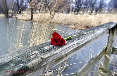 Art Print featuring the photograph Rose On A Bridge by Verana Stark
