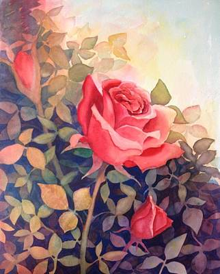 Rose On A Warm Day Art Print by Marilyn Jacobson