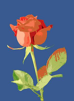 Rose On Blue Art Print by Mauro Celotti