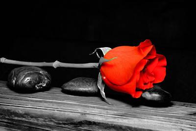 Rose On Stones Original by Tommytechno Sweden