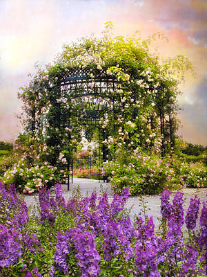 Photograph - Rose Pergola by Jessica Jenney