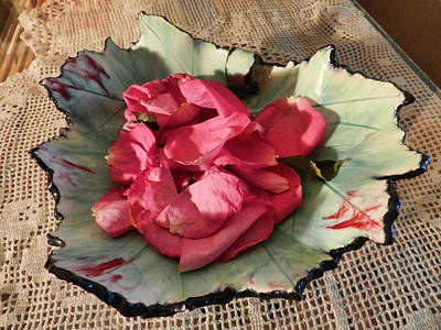 Photograph - Rose Petals In Leaf by Grace Dillon