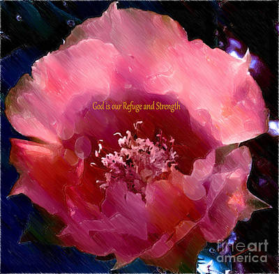 Prickly Rose Photograph - Rose Prickly Pear by Beverly Guilliams
