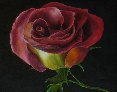 Painting - Rose by Sherry Robinson