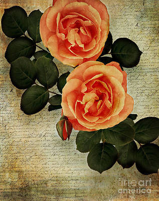 Floribunda Digital Art - Rose Tinted Memories by Edmund Nagele