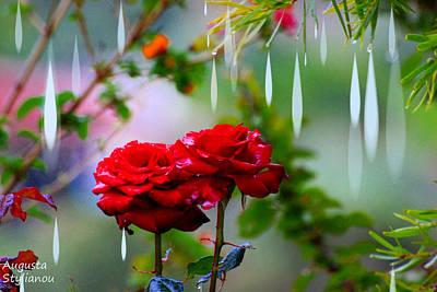 Digital Art - Rose Water Drops by Augusta Stylianou
