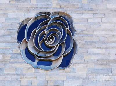 Photograph - Rose Window by Steven Parker