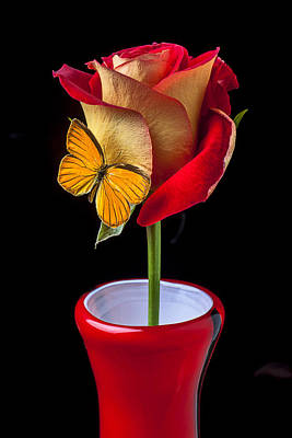 Red Petals Photograph - Rose With Butterfly In Red Vase by Garry Gay