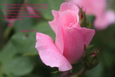 Rose With Scripture Art Print by Carolyn Ricks