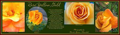 Rose Yellow Gold Plus Art Print