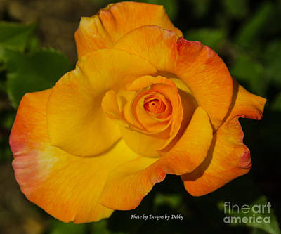 Art Print featuring the photograph Rose Yellow Red by Debby Pueschel