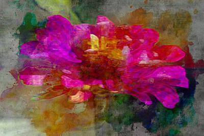 Photograph - Roseate by Alice Gipson