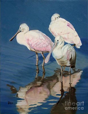 Art Print featuring the painting Roseate Spoonbill Trio by Jimmie Bartlett