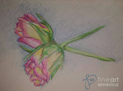 Painting - Rosebuds by Jeanette Hibbert