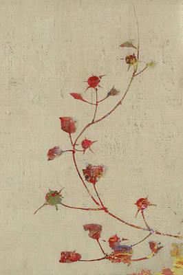 Red Rose Digital Art - Rosebush by Aged Pixel