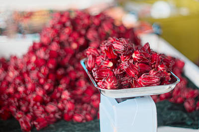 Photograph - Roselle Fruit by Jared Shomo