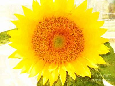 Digital Art - Rosemary's Sunflower by Denise Dempsey Kane