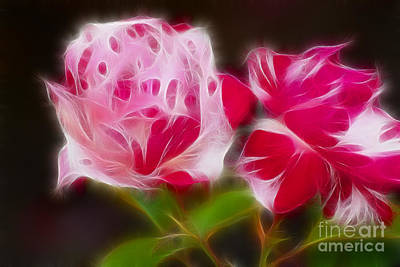 Roses 6221-fractal Art Print by Gary Gingrich Galleries